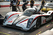 Muscle Milk Aston Martin Racing