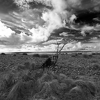 I recently had a working holiday on North Uist in the  Outer Hebrides. I had been told that there was a young sea eagle in the location of Baleshare beach on the west side. I spent an afternoon walking up and down the machair and passed this interesting structure several times. It is a piece of metal from an old abandoned boat which has been added to over time with sticks and old fishing net. I converted the image to black and white as I liked the cloud structure stretching away over the atlantic. The picture was taken with a Nikon D4 and a 14-24mm lens. happily i also got my picture of the sea eagle as well.. Copyright Christian Cooksey. No use online or print without the express permission ofChristian Cooksey