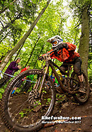 Cross Country, Downhill - Saturday