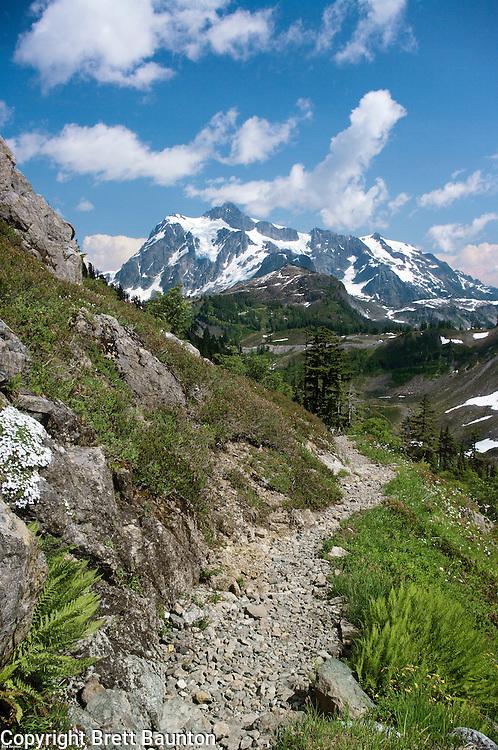 Chain Lakes Trail; Mt. Shuksan, Mt. Baker Wilderness Area; North Cascades