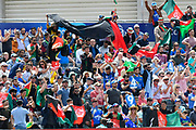 Afghanistan fans wave their flags after Rahmat Shah of Afghanistan hits a boundary during the ICC Cricket World Cup 2019 match between Afghanistan and Australia at the Bristol County Ground, Bristol, United Kingdom on 1 June 2019.