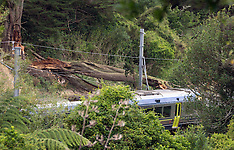 Wellington-Matangi train runs into fallen tree at Takapu