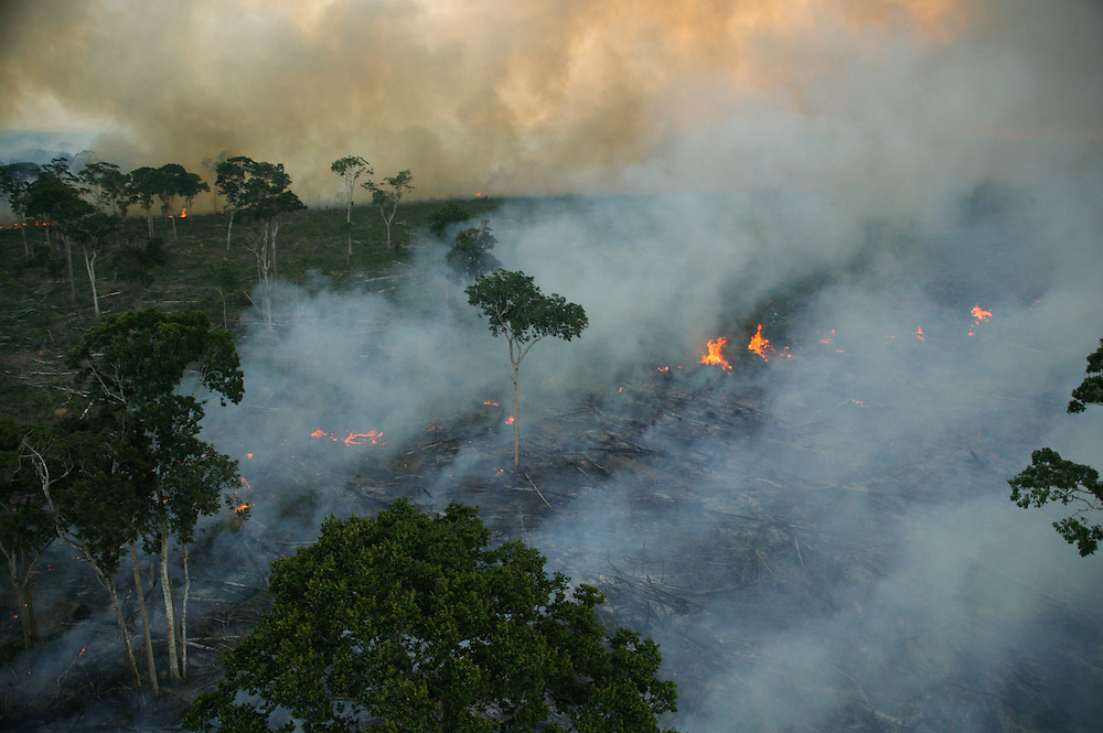 Dec. 6, 2003: Santarem (Para State, Brazilian Amazon). Big fires are set to clear the rainforest jungle for soy plantation around Santarem. ©Daniel Beltra