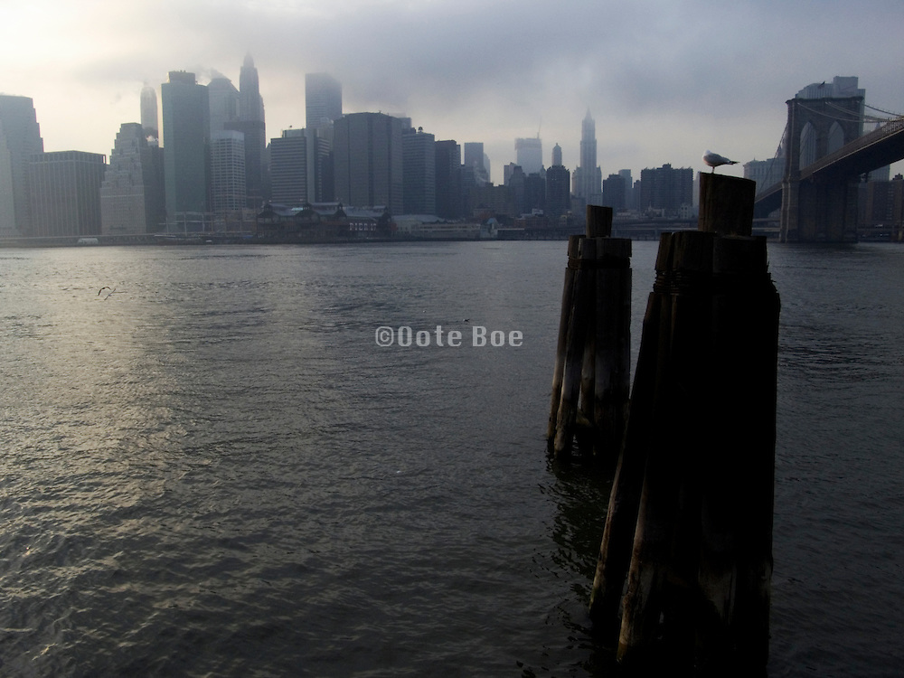 downtown New york skyline with the Brooklyn Bridge