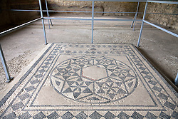 Two-century-old mosaic paving found in the excavated ruins of a palatial home has been preserved and repaired at  La Villasse (Vasio in 1st century BC) in the Roman site of La Villasse in the heart of Vaison-la-Romaine, Ventoux, Provence, France.