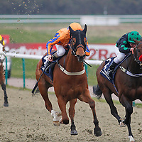 Multitask and Liam Keniry winning the 4.00 race