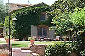 Mediterranean Garden 570