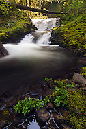 Middle Dutchman Falls - Columbia River Gorge National Scenic Area