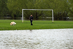 © London News Pictures. 01/05/2012. Tewkesbury, UK. A woman walking her dog through a football field covered in flood water  in Tewkesbury, Gloucestershire, England on May 1, 2012. The UK has had its wettest April in over a century, with some areas seeing three times their usual average rainfall, according to figures from the Met Office. Photo credit : Ben Cawthra /LNP