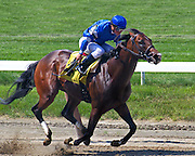 """Buffum"" breaks his maiden with David Cohen aboard and paid a nice $18.20 that day in 2010."