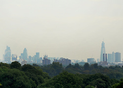 © licensed to London News Pictures. RICHMOND, UK.  02/08/11. The London skyline seen through the haze. People and animals in the hot sun today (2nd August 2011) in Richmond Park, Surrey. Temperatures are set to reach 30 degrees Celsius in some parts of London over the next few days.  Mandatory Credit Stephen Simpson/LNP