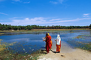 Jaffna Peninusla, beside the A9 highway, monks from the south of the country bathe in a tank. September 2002