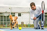 IMG | Dog Tennis