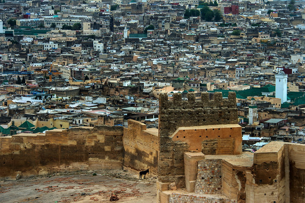 Inside the ancient Medinah of Fes