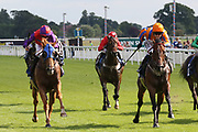 SECRETINTHEPARK (12) ridden by Cian Macredmond and trained by Michael Mullineaux winning The Irish Thoroughbred Marketing Handicap Stakes over 5f (£15,000)  during the John Smiths Cup Meeting at York Racecourse, York, United Kingdom on 12 July 2019.