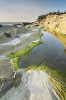 Sandstone cliffs of Shore Acres State Park on the Oregon Coast