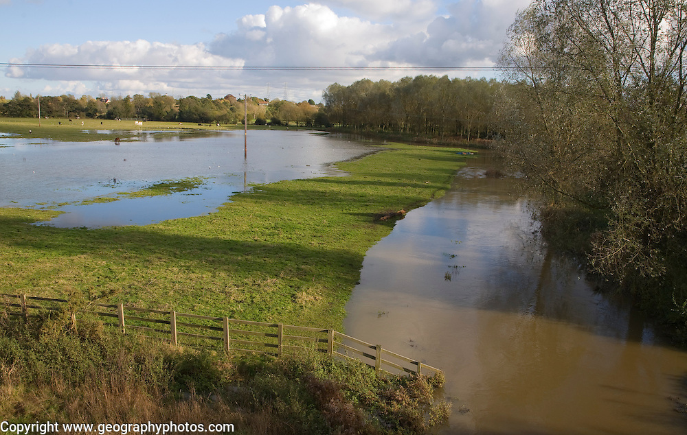 River Deben flooding showing standing water and bankfull conditions, Wickham Market, Suffolk, England