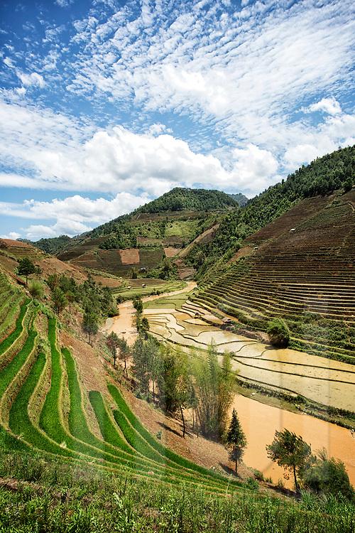 Mu Cang Chai rice paddy fields, Yen Bai Province, Vietnam, Southeast Asia