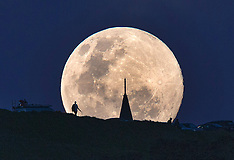Auckland / Blenheim - Super Moon rises