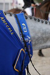 Prizegiving<br /> World Championship Young Horses Lanaken 2008<br /> Photo Copyright Hippo Foto