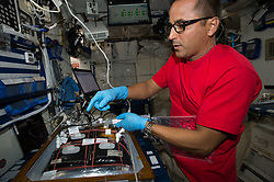 October 5, 2018 - Space - In this image from November 2017, astronaut JOE ACABA installs botany gear for the International Space Station's Veggie facility to demonstrate plant growth in space for the Veg-03 experiment. The botany study uses Veggie to cultivate cabbage, lettuce and mizuna, which are harvested on-orbit with samples returned to Earth for testing. Acaba, a former middle school math and science teacher, participated in the Year of Education on Station (YES) initiative, which took place from September 2017 to October 2018. (Credit Image: ? NASA/ZUMA Wire/ZUMAPRESS.com)