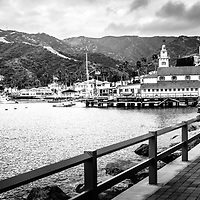 Catalina Island Avalon Bay Casino Way panorama photo. Panoramic picture ratio is 1:3. Picture includes Catalina Island Yacht Club and Avalon city waterfront businesses. Catalina Island is a popular travel destination off the coast of Southern California in the United States.