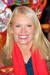 © Licensed to London News Pictures. 21/11/2013, UK. Anneka Rice, Hyde Park Winter Wonderland VIP Opening, Hyde Park, London UK, 21 November 2013. Photo credit : Richard Goldschmidt/Piqtured/LNP