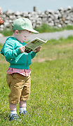 25/5/2016  Repro Free : Andrew Woods 3 years old at Newford Herd Open Day  at Teagasc Athenry, Mellows Campus Co Galway. Thousands showed up for this event Photo:Andrew Downes, xposure