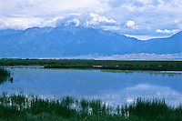 Cotton Lake in the Great Sand Dunes National Park and Preserve.  San Luis Valley, Colorado.