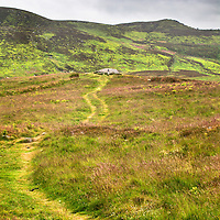 Path to a Cup and Ring Marked Rock near Lordenshaws Iron Age Hillfort on Garleigh Moor below The Beacon in the Simonside Hills Rothbury Northumberland England