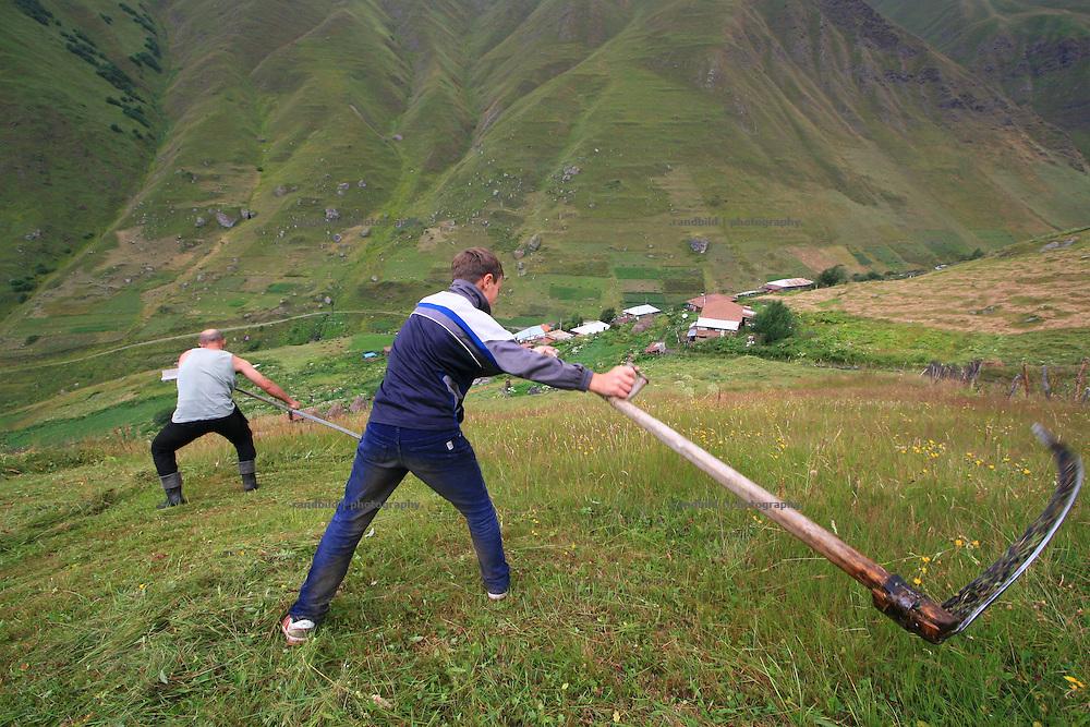 Ein Georgier bringt seinem Sohn im Bergdorf Dshuta das Sensen zur Heuproduktion bei. A georgian man teaches his son in a mountain village in cutting the gras for hay.