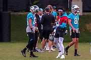 Carolina Panthers quarterback Cam Newton(1) during minicamp at Bank of America Stadium, Thursday, June 13, 2019, in Charlotte, NC. (Brian Villanueva/Image of Sport)