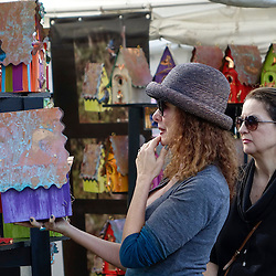 Beaux Arts Festival of Art: 01-17-16