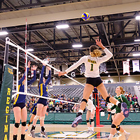 4th year outside hitter Ashlee Sandiford (1) of the Regina Cougars in action during the Women's Volleyball Home Game on November 17 at University of Regina. Credit Matt Johnson/©Arthur Images 2017