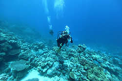 A diver with an underwater camera at the Rowley Shoals.