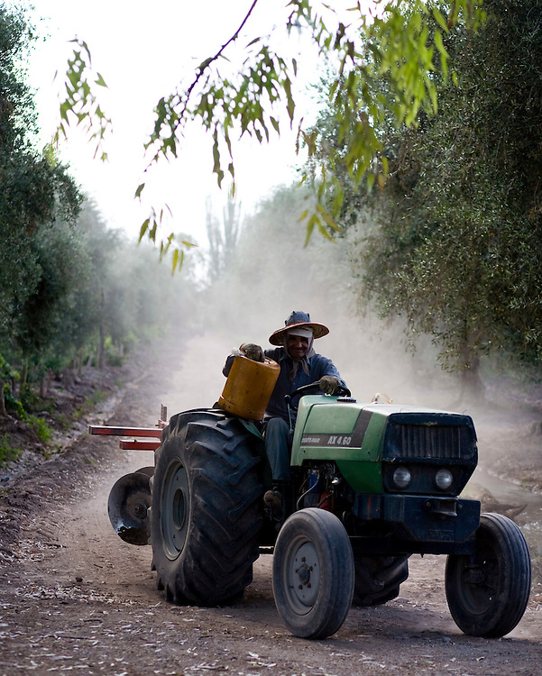 A farm worker drives a tractor through at Finca La Heredad vineyard, which surrounds Club Tapiz, a boutique hotel in the Luján de Cuyo area of Mendoza, Argentina.