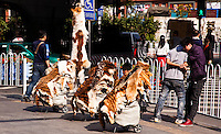Possibly rare and/or endangered animal skins for sale on the streets of Guangzhou.