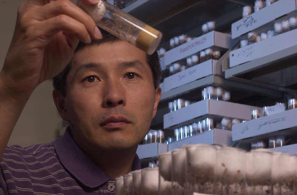15901            Soichi Tanda working in lab At Life Sciences