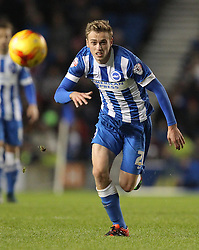 James Wilson of Brighton and Hove Albion - Mandatory byline: Paul Terry/JMP - 28/11/2015 - Football - Falmer Stadium - Brighton, England - Brighton v Birmingham City - Sky Bet Championship