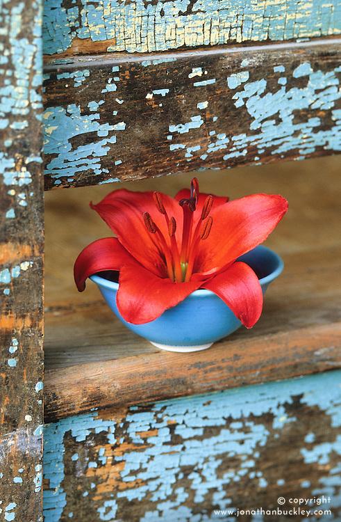 Single lily vase