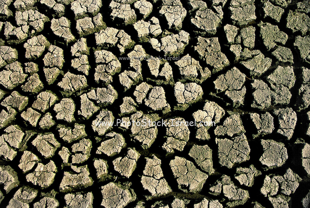 environmental concept, Water shortage and drought Dry cracked mud