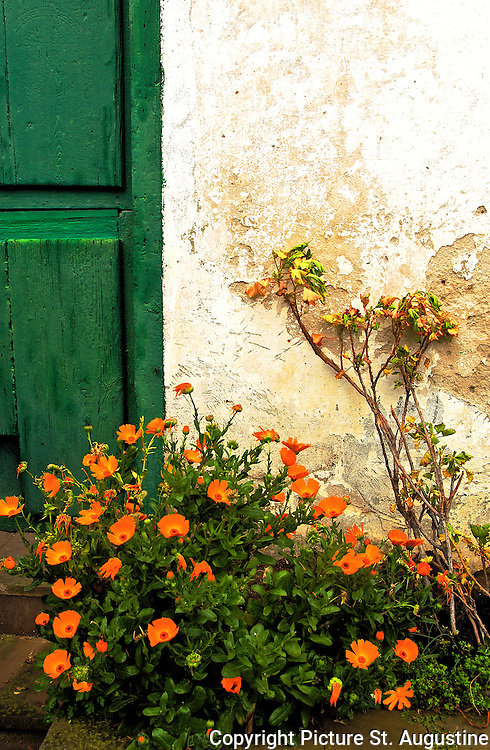 Orang flowers against a green door and stucco wall in San Vicente, Spain.