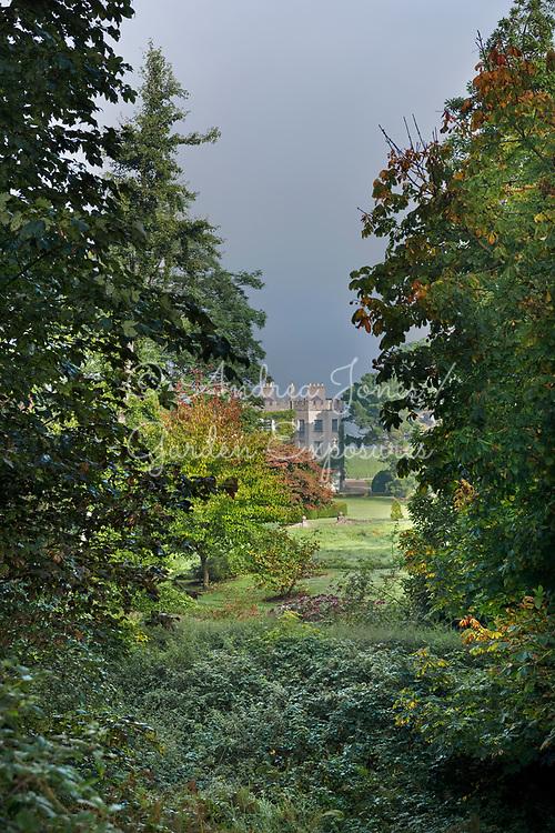 View through trees to Glin Castle, Ireland
