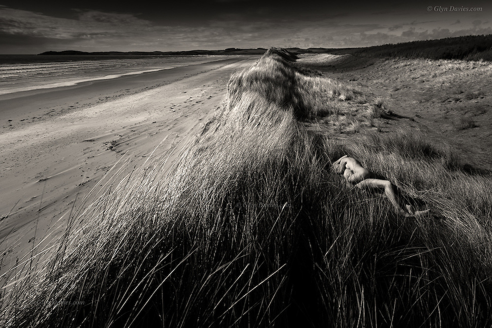 Evening light illuminates a vast tract of tall marram covered dunes. In the lee of a cool, stiff breeze, two lovers entwine their bodies, heat against heat, warm skin pressed against warm skin, connected as one and oblivious to the stabbing of the needle like grass all about them.<br />