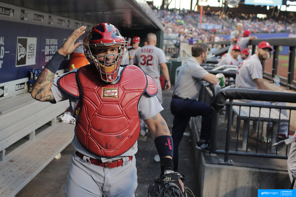 NEW YORK, NEW YORK - July 27: Yadier Molina #4 of the St. Louis Cardinals heads out of the dugout to catch during the St. Louis Cardinals Vs New York Mets regular season MLB game at Citi Field on July 27, 2016 in New York City. (Photo by Tim Clayton/Corbis via Getty Images)