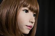 ERICA: ERATO ISHIGURO Symbiotic Human-Robot Interaction Project<br /> <br /> Fotograf: Christina Sj&ouml;gren<br /> Copyright 2018, All Rights Reserved