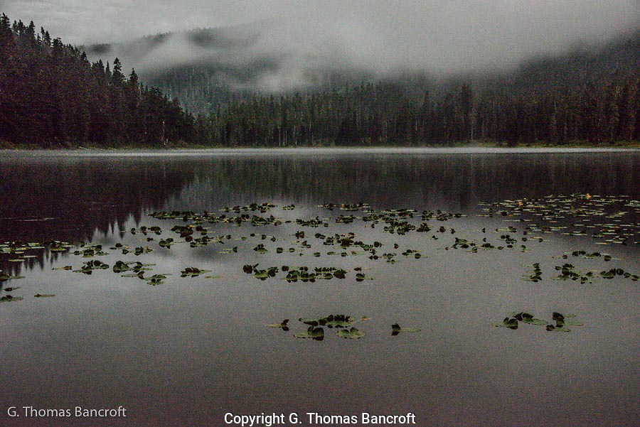 At 3AM, the moon was glowing through clouds giving a eerie feel to the woods.  I walked down to Lake Janus to find mist rising from the lake and clouds drifting by the forest.  A great-horned owl called softly from the forest on the right.  The lake was sublime and I watched for a long time before retuning to my tent.