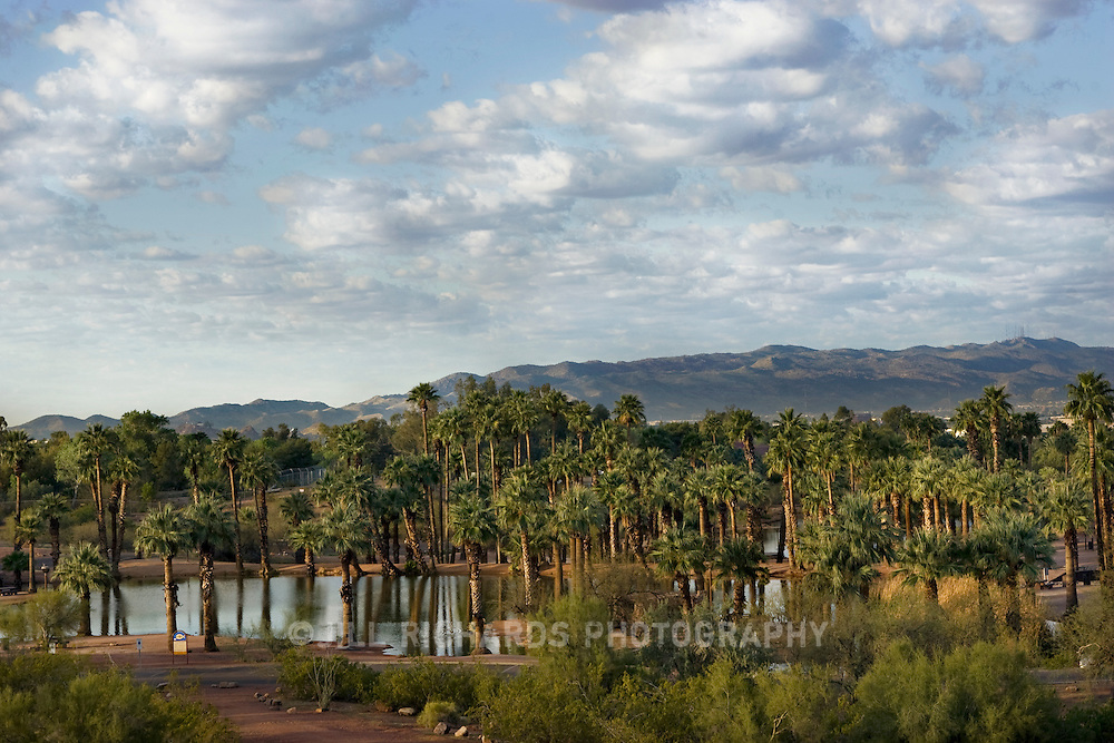 Papago Park sits between Phoenix and Tempe in Arizona. It's hilly desert of red rocks of unusual shapes makes it a Phoenix Point of Pride. Pictured is one of the small Papago ponds and palm trees.