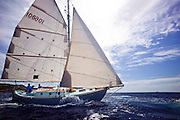 Principito sailing in the Old Road Race at the 2011 Antigua Classic Yacht Regatta.