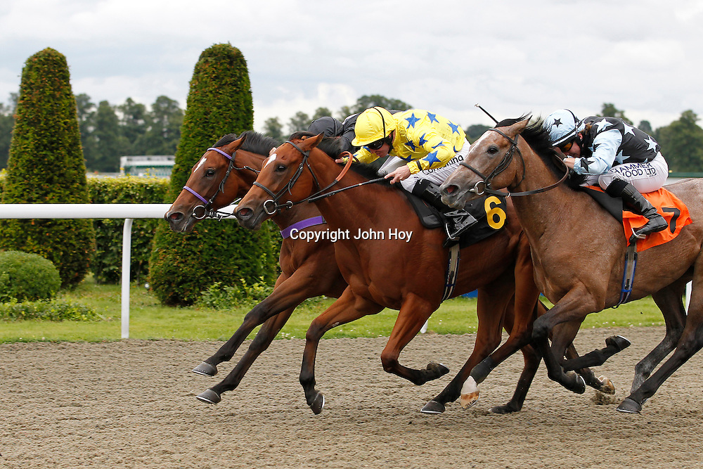 Rio's Pearl and Jim Crowley winning the 2.30 race